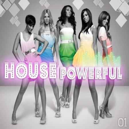 VA - House Powerful 01 - сборник (2009)