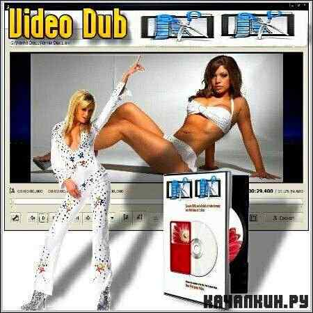 Free Video Dub 2.0.1 build 1123 (RUS/ML)